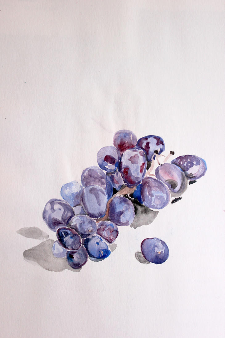 Grapes by Yoonett