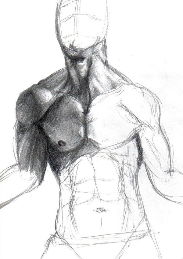Male anatomy study WIP by DemonShuriken87 on DeviantArt
