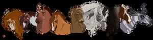 SA| Chapter 6 Leaders