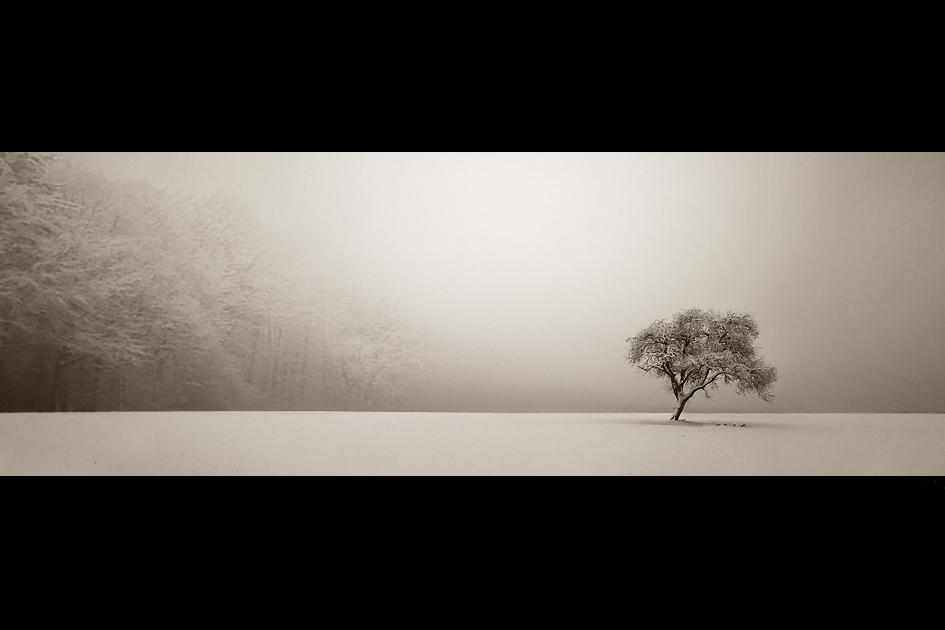 Einsam by Analil