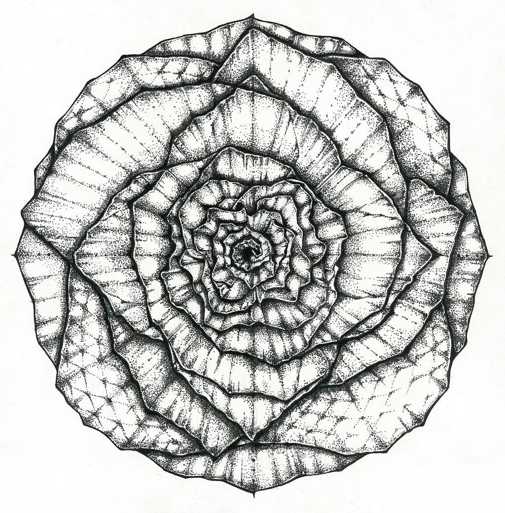 Mandala flower by aPopova on DeviantArt