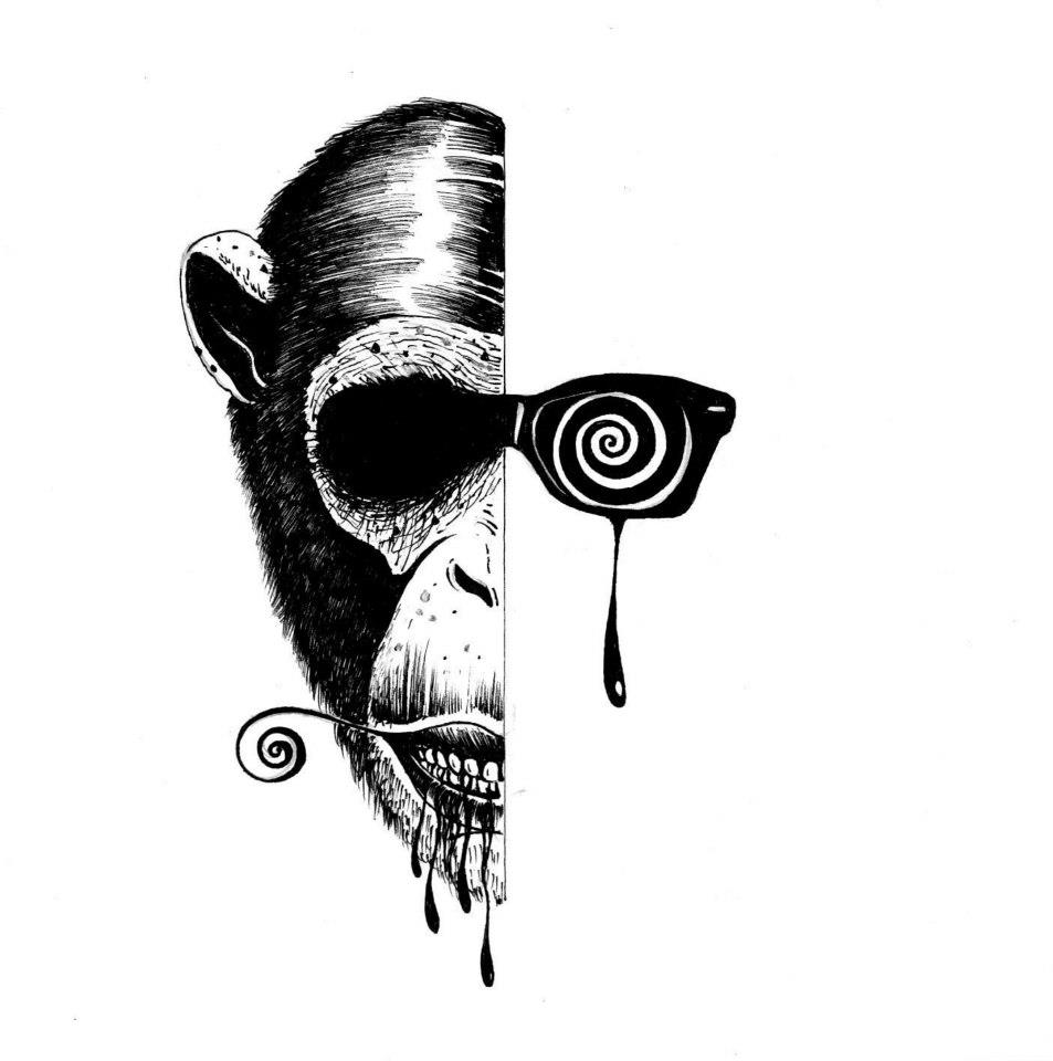 Keneru 2013 -The Monkey by Keneru92
