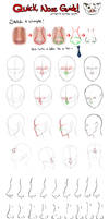 Quick Nose Guide by juliajm15