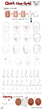 Quick Nose Guide
