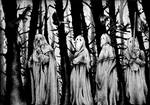The Occult Forest