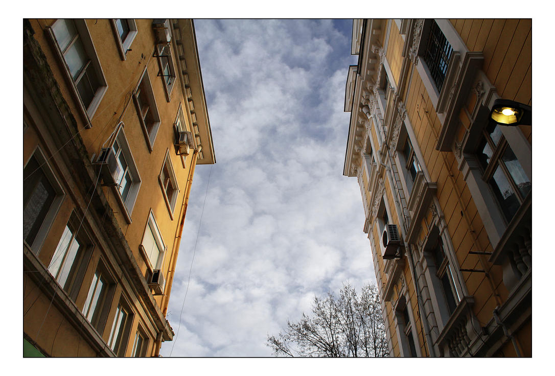 IMG_8548 by xiiid