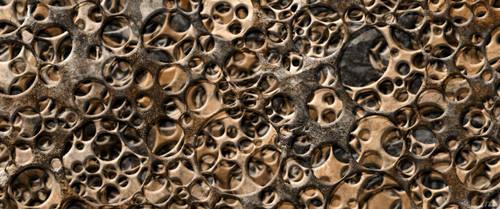 Bones of the world Wallpaper