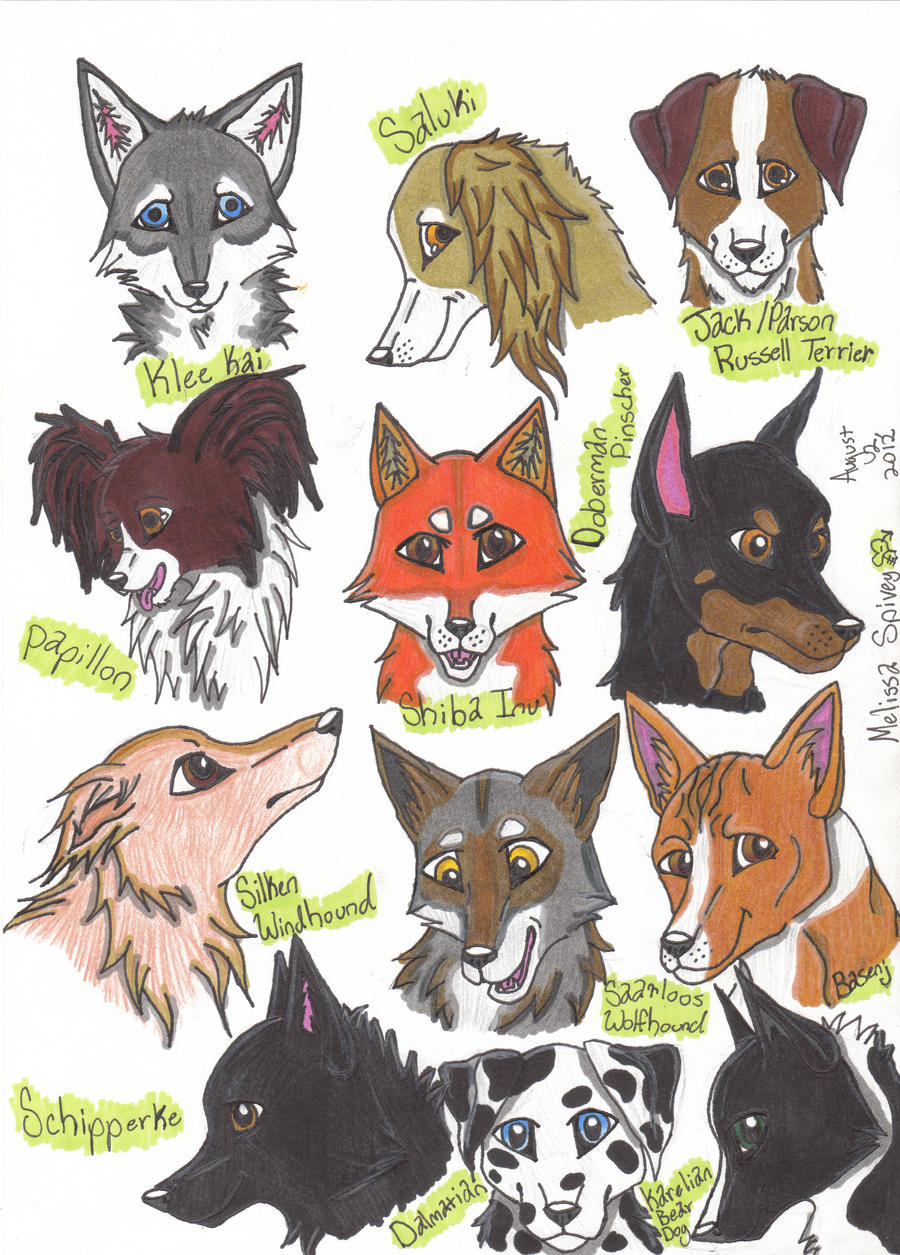 Breeds Of Dogs Lps Dog Picture