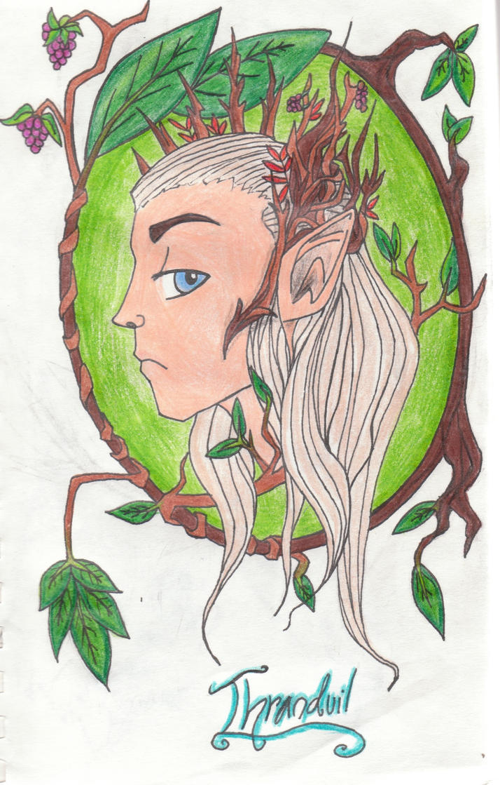 The Elvenking by Cobalt-Flame