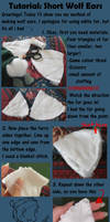 Tutorial: Small Wolf Ears by InsaneMonkey46