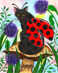 Logan The Ladybug Fairy Cat