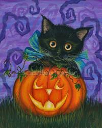 Halloween Black Kitty