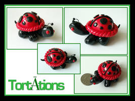 Dot the Tiny Tort by Tortations