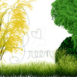 Go Green Trees