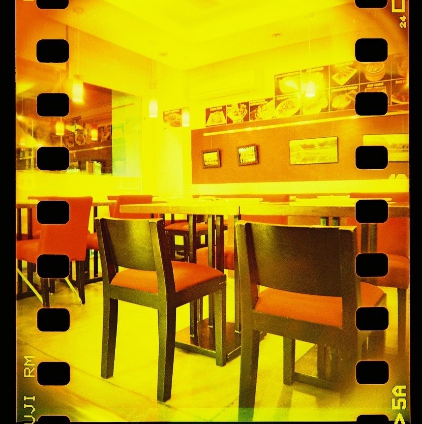 Blackbird, fly TLR camera, Fuji Sensia 200 film, crossprocessed.