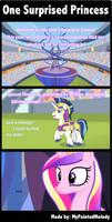 Comic: One Surprised Princess