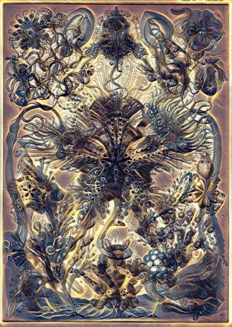 Haeckel Variation 5 by james119