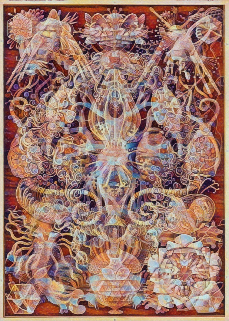 Haeckel Variation 6 by james119