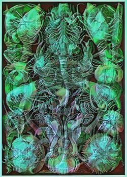 Haeckel Variation 7