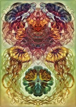 Haeckel Variation 13