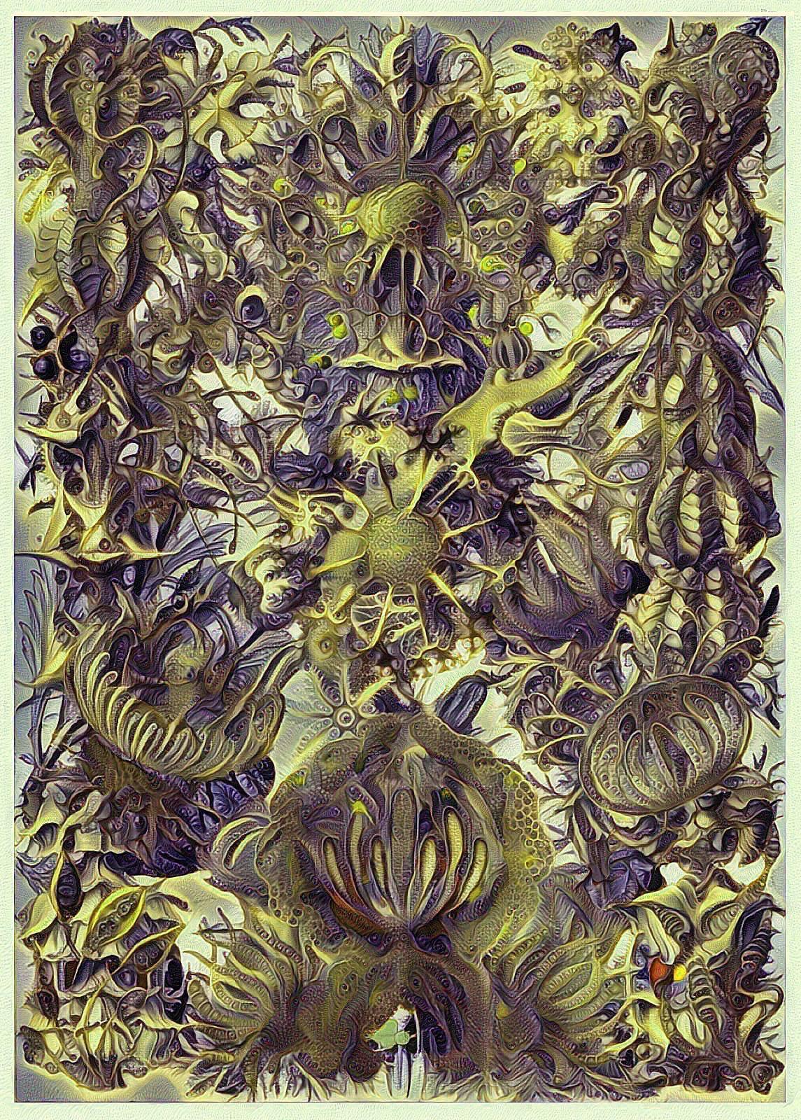 Haeckel Variation 17 by james119
