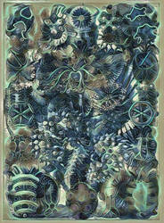 Haeckel Variation 19
