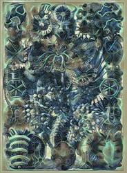 Haeckel Variation 19