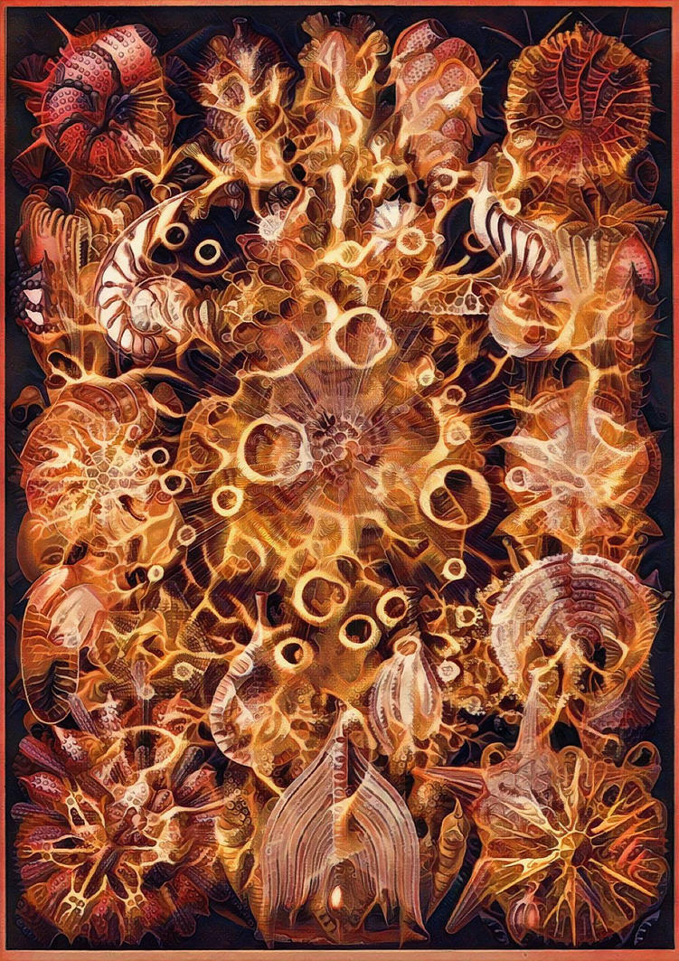 Haeckel Variation 21 by james119