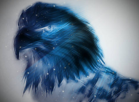 Gift of The Eagle