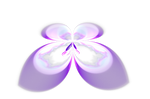 Free Fractal Mandelbrot Butterfly png_by PaMonk