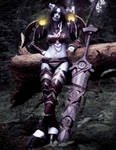 World of Warcraft (Draenei Warrior) 5