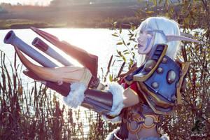 World of Warcraft (Night Elf Hunter) 5