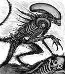 Alien 2010