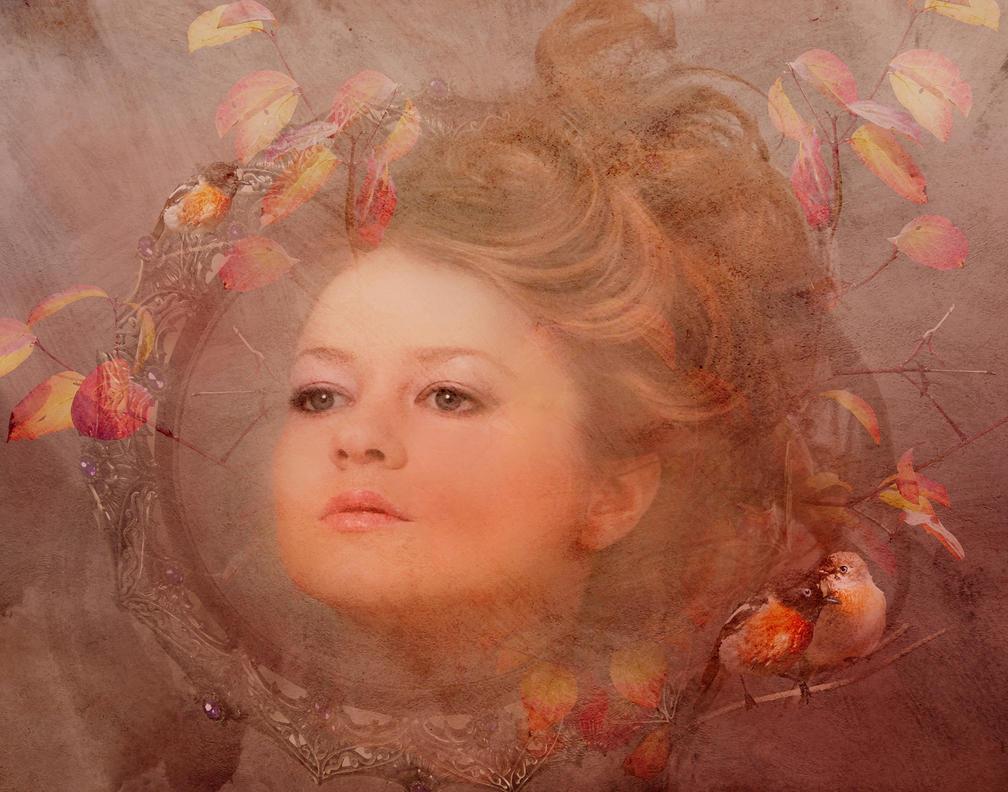 Autumn Rose by amethystmstock