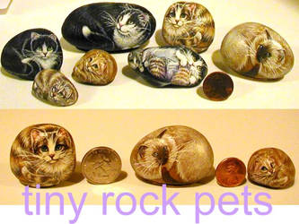 Tiny Rock pets by carefulwhatyawishfor
