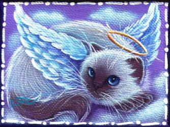 Himalayan Angel Kitty by carefulwhatyawishfor