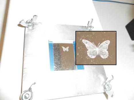 Aluminum Butterfly 2