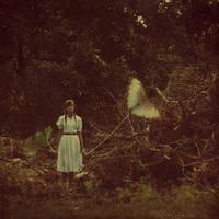 my butterfly by DarkGomo