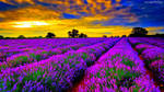 paisagem - capa para YouTube by BiancaPeres