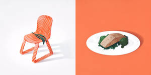 Salmon and seat