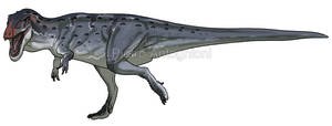 Giganotosaurus carolinii by pietro-ant