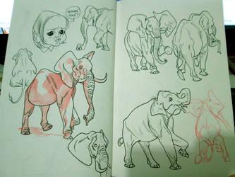 Elephants by pietro-ant