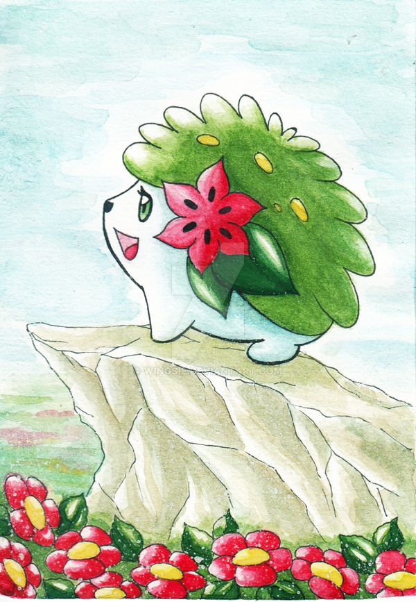 PKM - Shaymin by Wingsie