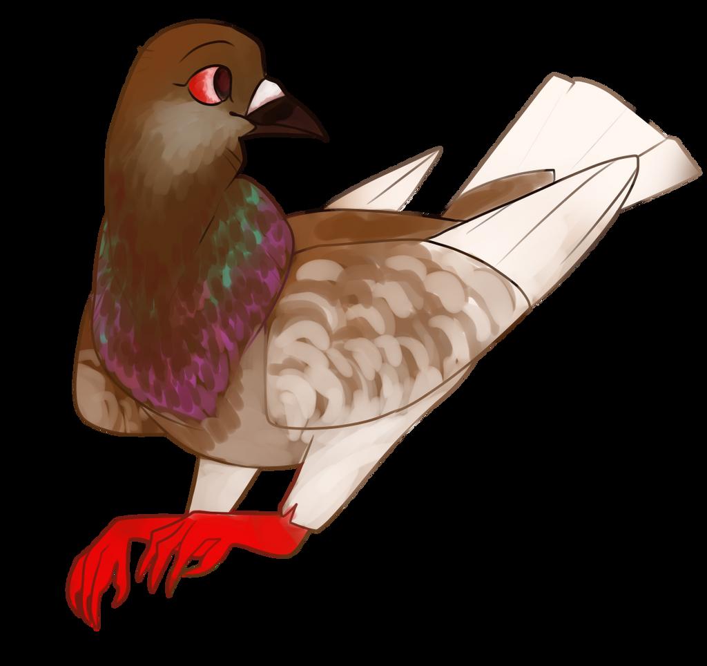 Pigeon appreciation day by Liliumaa