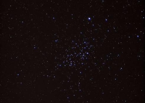 Wishing Well Cluster