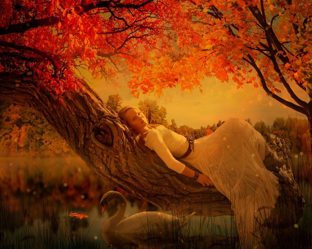 Life is but a Dream by DawnAllynn