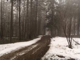 Abandoned Roads 3