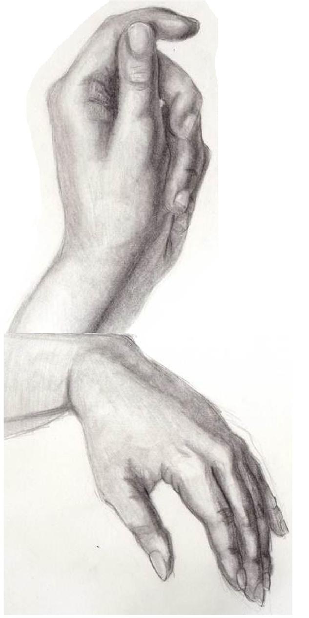 Hand by AlexRammsteiner
