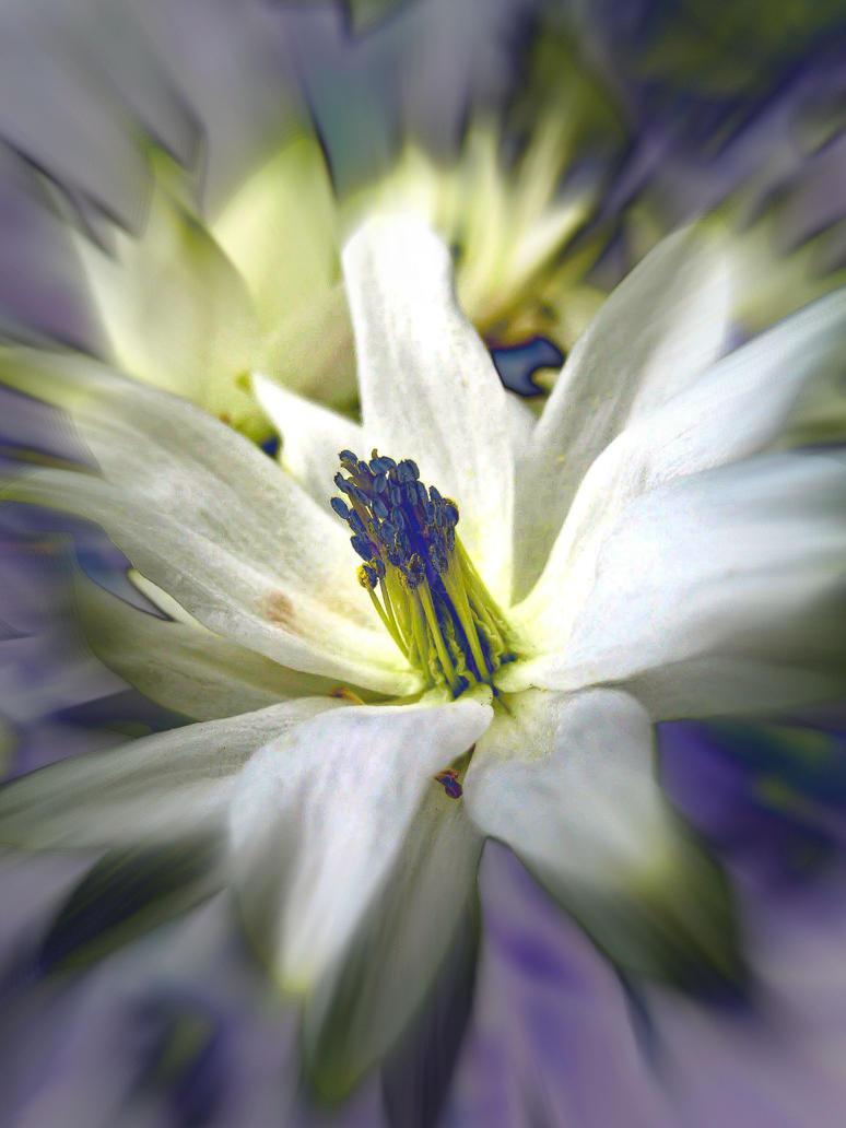 Misty Blue By Iris Cup On Deviantart