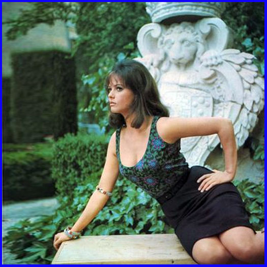 Claudia skirt by slr1238